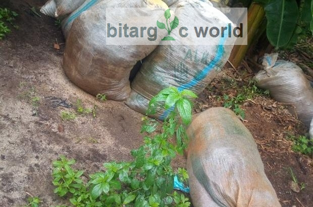 Poultry Manure For Sale