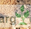 Seed Project Nigeria Limited