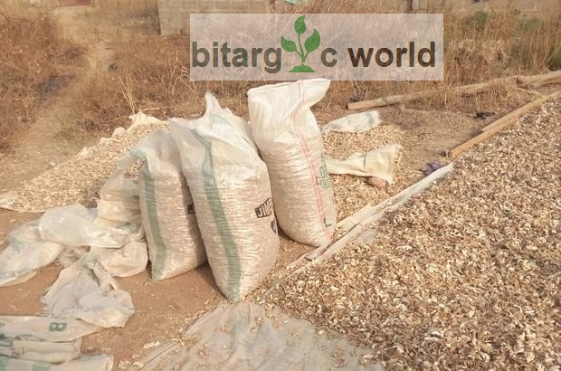 Fresh And Dried Ginger In Metric Tonnes