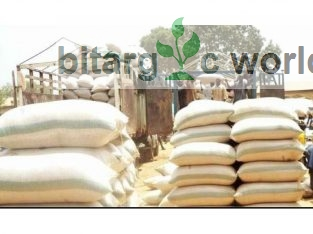 Bags Of Beans For Sale