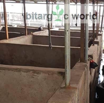 Pig Pens For Sale At Oke-aro New Farm.